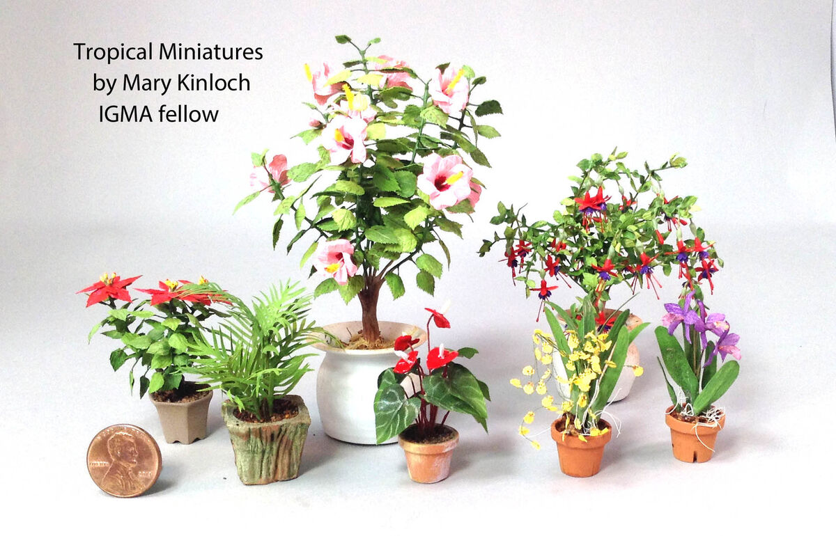Tropical Miniatures by Mary Kinloch