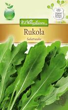 Rukola, Salatrauke - Eruca sativa, Rucola, ca. 350 Samen 4976