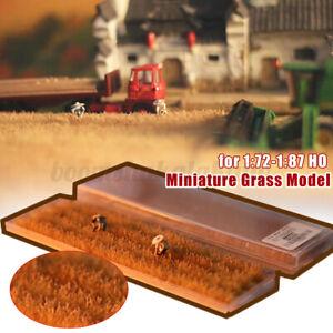Mini Rice Field Grass Model Scenario Train Sand Table DIY Modelling Materials