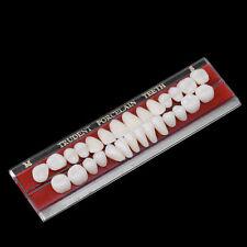 Hot 1 Set 24 # Porcelain Teeth Alloy-Pin Tooth Dental Materials Dentures Colors