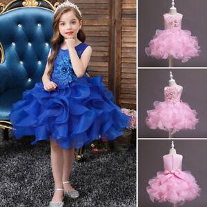 Flower Girls Embroidery Princess Dress Kids Tutu Pageant Christmas Wedding Gown
