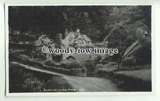 "tp9935 - Devon - Medieval "" Dream Village"" of Buckland-on-the-Moor - Postcard"