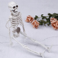 40CM medical model skeleton terror skeletons halloween party decoration gift  HO