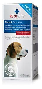 RECOACTIV® Hund Gelenk FORTE Großflasche a 280 ml(9,60€/100ml)