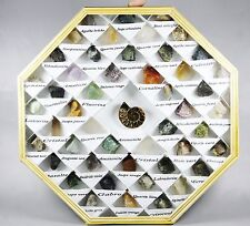 49pcs fossil and mineral specimen Teaching School Collection fossil rock display
