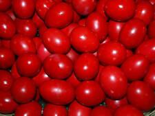 1 Sachet Red Easter Egg Dye Paint Decorating Painting Craft Art - for 20 Eggs