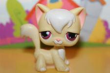 Littlest Pet Shop Figur Katze Angorakatze #364, super niedlich