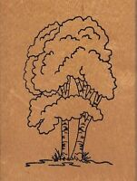 "birch tree stamps happen Wood Mounted Rubber Stamp 2 x 3""  Free Shipping"