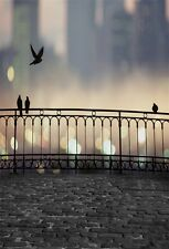3x5ft Birds Fence Bokeh City Night Photography Backgrounds Vinyl Photo Backdrops