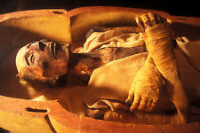 Framed Print - Egyptian Mummified Remains of Ramesses II (Picture Sarcophagus)