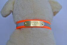 """WARNER REFLECTIVE DAYGLO DOG COLLAR >ORANGE< 23"""" BRASS ID TAG"""
