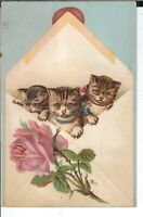 AB-191 Victorian Era Puppies and Kittens in Envelope Trade Card Cats and Dogs