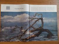 1959 Photo Article Ad Carolina Coast  Bull Island South Carolina