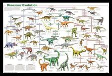 (FRAMED) DINOSAUR EVOLUTION POSTER PRINT PICTURE - READY TO HANG ART NEW