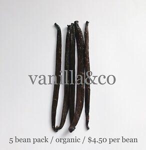 Vanilla Beans / 5 Bean Pack / Grade A / 16cm