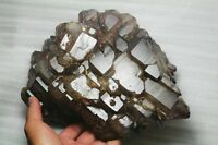 12.7lb  AAA Rare natural purple crystal healing bone+mica