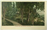 Elysian Park Los Angeles California CA Vintage Undivided 1900's Postcard