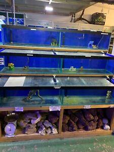 Aquariums, fish tanks, 1800 x 300 x 400mm (split 2x900). 8+ available