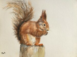 ORIGINAL SIGNED A4 WILDLIFE WATERCOLOUR PAINTING:RED SQUIRREL