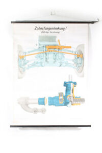 Wall Chart Roll Chart Card Rack and Pinion Steering I Oblique Gearing