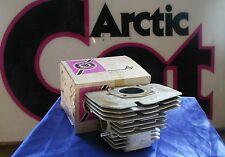 Arctic Cat NOS 1974 El Tigre 295 Cylinder # 3001-483 New!!