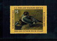 Junior Duck Stamp JDS8 Graded GEM 100 (Hard To Find) MNH 2000-2001