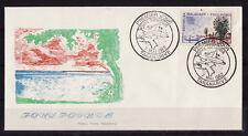 d/ Madagascar enveloppe   série touristique   foulpointe   1962