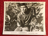Young Jesse James Lobby Card Press Photo Still 8x10 Ray Stricklyn Willard Parker