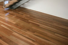 Australian Spotted Gum Solid Timber Floors Tongue and Groove