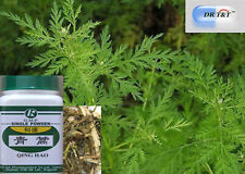 100g Qing Hao /Herba Artemisiae Apiaceae/ wormwood  concentrated powder(1:7)
