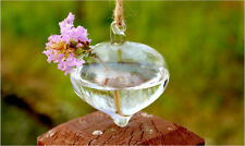 Flower Hanging Glass Plant Vase Hydroponic Container Pot Home Wedding Decor Gift