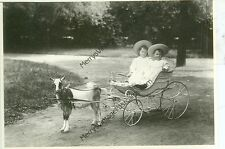 """CHILDREN IN WICKER BUGGY-PULLED BY GOAT-REPRODUCTION 4""""X6""""-(GOAT-99*)"""