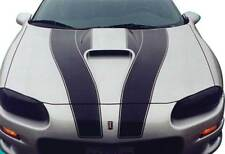 GM Part  10307873  STRIPE, Bumper/Fascia 30th anniversary 1998 SS camaro  black