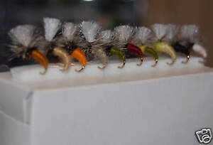 10 Assorted KLINKHAMMERS Dry Trout fly fishing flies size 18 by Dragonflies