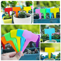 50pcs Plastic Plant Labels Garden Markers T-Type Gardening Name Tags Herbs Pot