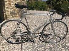 Alan '80 Competition Full Campagnolo SR Panto