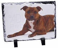 Staffordshire Bull Terrier Dog Photo Slate Christmas Gift Ornament, AD-SBT6SL