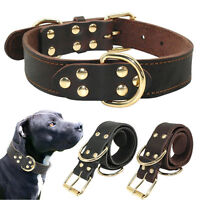 Heavy Duty Genuine Leather Pet Dog Collar Luxury Brass Buckle for Dogs M L XL