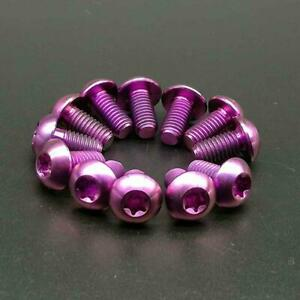 12Pcs Purple Titanium Ti M5x10mm Screws Torx T25 Titanium Disc Brake Rotor Bolts