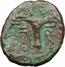 Cyme Kyme in Asia Minor 100BC  Ancient Greek Coin  Artemis  Vase Rare  i27666