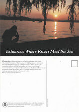 ESTUARIES WHERE RIVERS MEET THE SEA UNUSED COLOUR POSTCARD