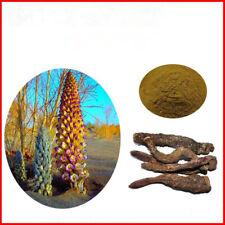 Cistanche Extract Powder 100 Gram 30:1 Jing High Quality Bulk Herb Rou Cong Rong