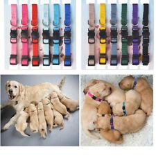 "Light Weight Soft Nylon Puppy Id Collar - ""Snap"" Buckle Collars - Litter Bands"