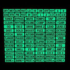 Loop/Pedal/MIDI Switcher Glow Labels