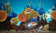 "Aquarium Fish Tank Double Sided Background 19"" Tall"