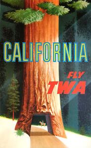 Vintage David Klein TWA Poster California Redwoods Mid Century Modern