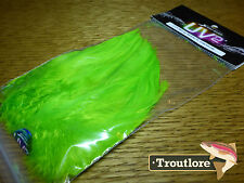"""SPIRIT RIVER UV2 CHARTREUSE SADDLE HACKLE 5-7"""" STRUNG - NEW FLY TYING FEATHERS"""