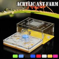 Ameise Farm Ameisen Arbeit Bildung Formicarium Acryl Nest Für Live Ameisen