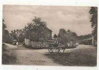 Seale Village Surrey 17 Sep 1905 Vintage Postcard 341c