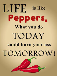 Retro Tin Signs Life is Like Peppers Poster Metal Plate Wall Decor Plaque